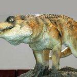 RT @lugaland_com: #Крокодилы. Интересные факты о ближайших потомках динозавров - http://t.co/Tq6BiP9oWB #познавательно http://t.co/5APpizBmZP