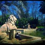 Fuente de los Leones, parque de María Luisa. #Sevilla #Sevillahoy http://t.co/iqI0bK6SES
