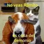 RT @Cesar260983: @DavisZone @ElGallinazo @reneealejandra Dioss mio Shakira ???????? http://t.co/v7PKYWFtwa
