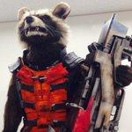 映画「ガーディアンズ・オブ・ギャラクシー」からあの宇宙最凶アライグマ「ロケット」が来日!? ワルぶったコメントを動画で公開 http://t.co/WcWwKzpXb2 #eiga http://t.co/4AbFRk3rmb