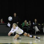 Baylor volleyball defeats Rice 3-1 (25-20, 22-25, 30-28, 25-17) to move to 3-1 on the season. http://t.co/DJkIom4frY
