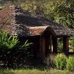 RT @lingerleisure: More about Vanghat Lodge: http://t.co/bankCf2ZrG stay@linger.in #Corbett #Wildlife #Birding #Vacation #India http://t.co/eXtcmbLhYx