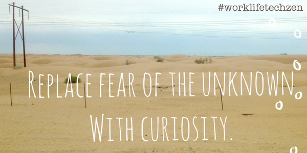 Replace fear. #courage #worklifetechzen http://t.co/d2ZybaId9p