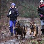 RT @Tvnet_portals: Interesanti: notiks orientēšanās sacensības ar suņiem http://t.co/H5ssa4CLOr http://t.co/RVAt8sGHnz