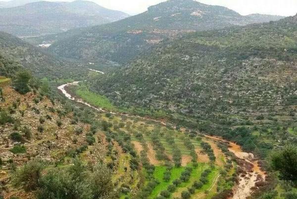 جبال دير غسانة، 2014، فلسطين (30 كم عن القدس)، بلدنا وبلدكم، بلد التين والزيتون والشعر والعيون، مركز قرى ال البرغوثي! http://t.co/Zoxvxv5DJa