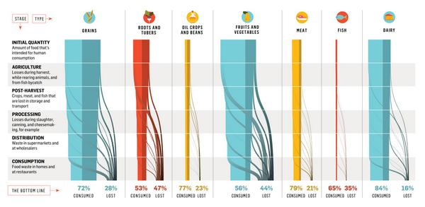 Here's a fun #infographic... How The World Wastes Food http://t.co/0aAwZYdz2q via @popsci http://t.co/jBGuHOZ9pV