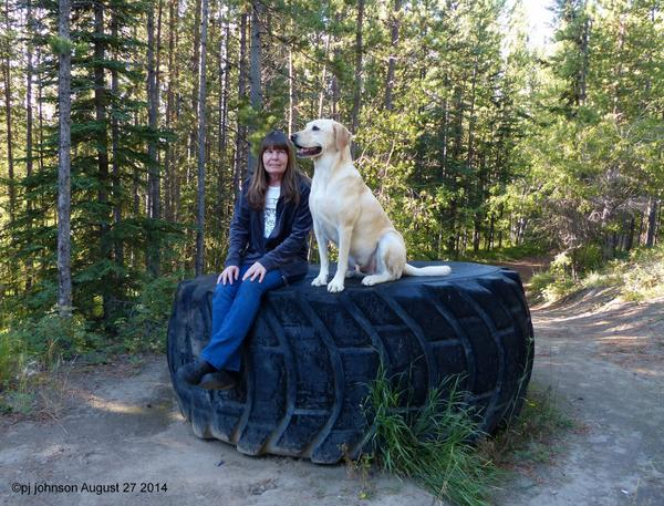 Me & Marley hanging out at a Yukon Tire. #Yukon http://t.co/48lPPsJNdM
