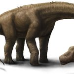 Worlds largest dinosaur discovered: http://t.co/F7zE4T03vP http://t.co/8IHRltVDNd #discovery #green #world #news