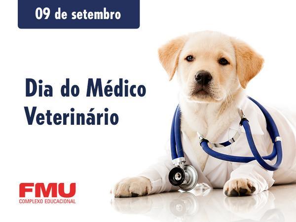 Veterinários são anjos da guarda que ajudam a manter o equilíbrio entre a saúde dos animais e o bem-estar dos donos. http://t.co/UttUEbYF69