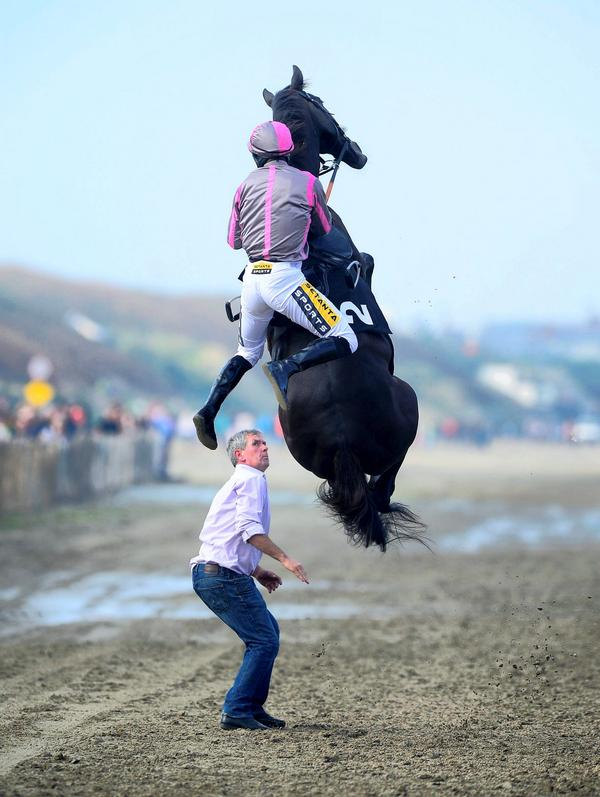 """@IndoSport: Image of the day: Horse rears up at picturesque Laytown http://t.co/YSWql2Q3EP http://t.co/SIk9ZFH7dU"" Wow! This is just crazy!"