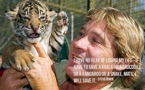 8 years ago, history's most famous crocodile hunter fell victim to a stingray. RIP Steve Irwin:http://t.co/NFc3z1pxvM http://t.co/BeDPvCVMD4