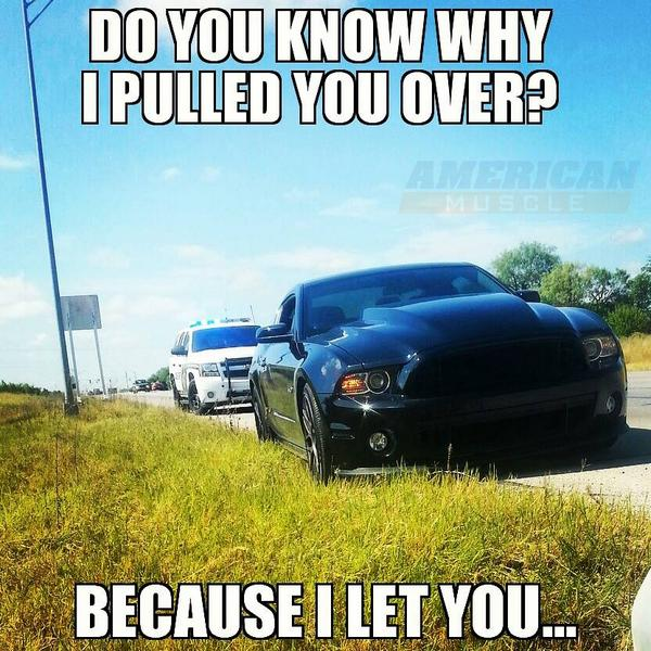 Because I let you... #Mustang http://t.co/NwozdcRSVO