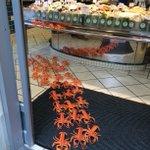 20 lobsters are still missing ! Please help! #ramus40 #findmylobsters http://t.co/ltSv1k5hJi