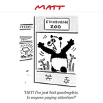 RT @Telegraph: Cometh the hour, cometh the Matt #indyref #Scotlanddecides http://t.co/0rBEYafKA0