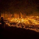 RT @Reuters_co_jp: スライドショー:米カリフォルニア州で山火事 http://t.co/zYweqEP0aV  http://t.co/Q0iMx35ch0
