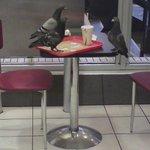 Et pendant ce temps là à St-Lazare les premiers acheteurs de liPhone 6 discutent au Burger King. http://t.co/wNdgOG0jNc