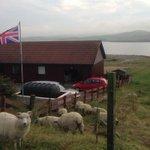 スコットランドの独立はかなわなかった。だが、スコットランドから「独立」したいと願っている島々もある⇒スコットランドからの「独立」を―シェットランド諸島 http://t.co/W7OOhlNlfX http://t.co/u7zA1VioGY