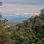 RT @GreenpeaceArg: ¿Por qué #Salta? ¿Por que los #bosques? ¿Por qué ahora? Las respuestas están en http://t.co/rlhyv2TkZO http://t.co/yhHUQ5DmtH