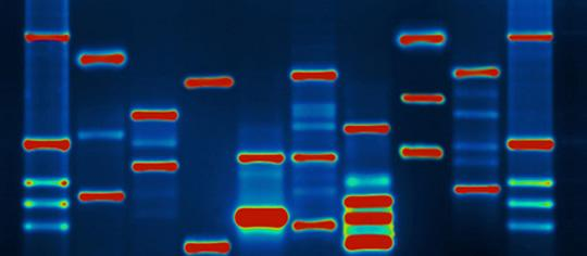 How Memories Can Be Genetically Passed Down Through The Generations http://t.co/C8G9Zwyfsf http://t.co/XPCfPBEPcy