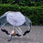 Track #airpollution with this smart umbrella: http://t.co/HrHgNiRSJn http://t.co/l2vTbod7eX #FastCoDesign #smartumbrella #green #enviro