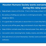 RT @HoustonHumane: Stay safe, Houston! #rainyday #houston #petsafety http://t.co/LfW90LSxec