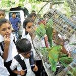 #Nicaragua: Ometepe, el nuevo hogar de diversas especies tras pasar meses en rehabilitación http://t.co/3wdd0OI5T2 http://t.co/7i8UKaF9Od
