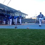 RT @Royals: Cage work for the boys in blue. #beroyalkc http://t.co/toXIDn50bf