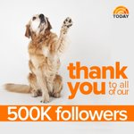 Congrats to @todayshow instagram on hitting 500k followers! http://t.co/RunodJVBgi
