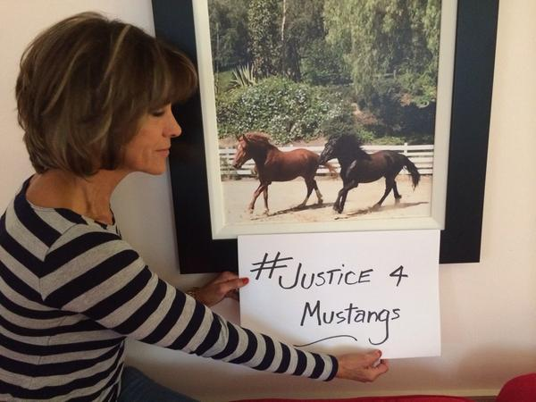 Sign the petition & RETWEET! #Justice4Mustangs https://t.co/L1ZNrwn1gG http://t.co/YuO6kQJVpO