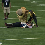 During Thursday's Falcons game, Freddie Falcon slammed a Bucs fan running around the field. http://t.co/UF62RblW70 http://t.co/ysl434oSTW