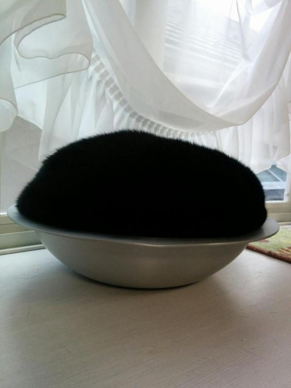 もう完全に器に盛られた黒い何かにしか見えない…  http://t.co/FoRqKbFOUf