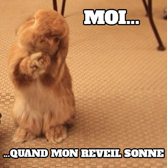 What does 'a tout le monde' mean - answers.com