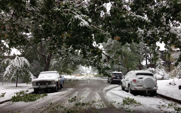 Another snow day in summer in Calgary. Trees down, roads closed. #yyc http://t.co/zHnKz0uMu5