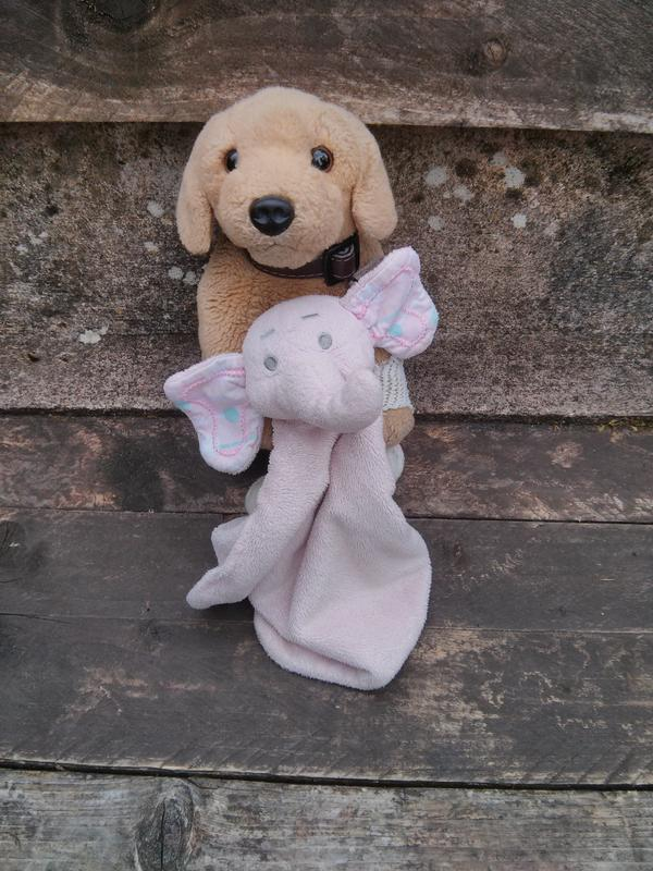 Have you seen little Kate's elephant Effie-lost somewhere between Brackenvale & Forestside - http://t.co/46rdEElc5O http://t.co/EzrgGD5vUU