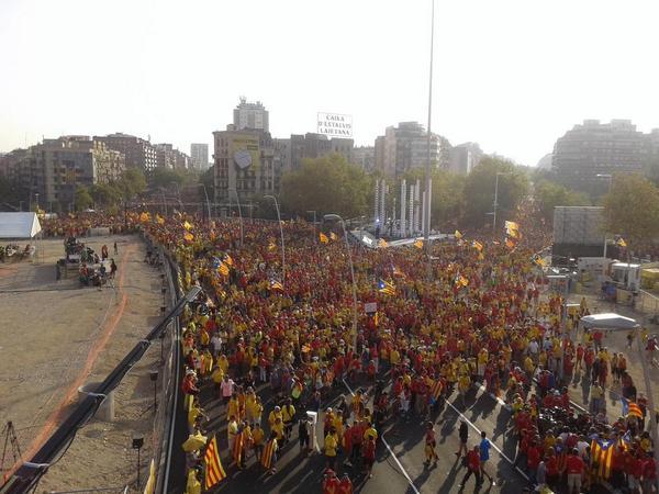 Ho hem fet i ho hem d'explicar: la V ha estat un èxit i ho volem dir al món perquè #catalansvote9N http://t.co/LvL8ReNYQK