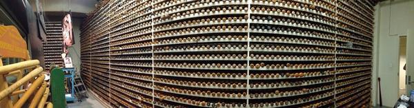 The vault @sluggernation...the original bats for each player.. I have the best job! #frontrow http://t.co/dgcjZ1aJz6