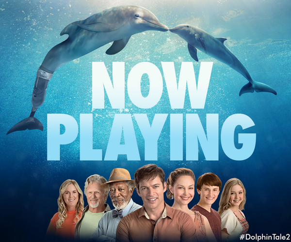 Discover the power of #hope and friendship. See #DolphinTale2 in theaters today! http://t.co/UeL9mkm7dx http://t.co/RaCOqCSySS