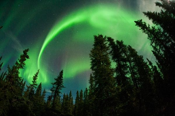 This was Fairbanks, Alaska last night, via JN Hall @spaceweather. More #aurora pics: http://t.co/Q84Texm4bp http://t.co/Yz34fZqZMk
