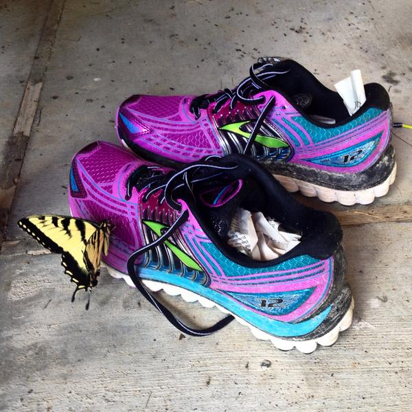 Runner tested, butterfly approved. http://t.co/lsHwbGOgMv #RunHappy http://t.co/QxBPTXFzwW