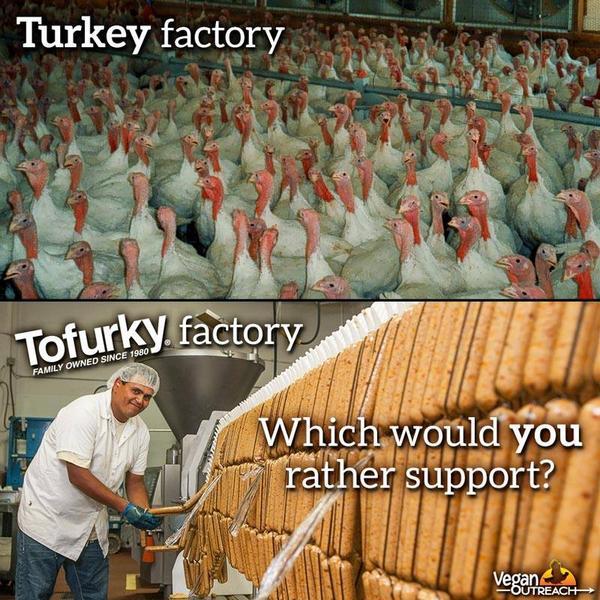 #EatTofurkyLoveTurkeys http://t.co/ffaONuuadf