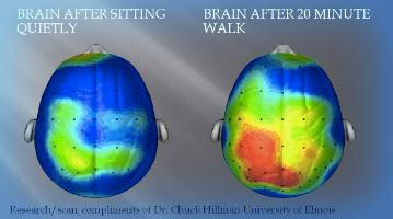 The (Possible) Importance of Activity for Learning   http://t.co/aNkZB4wzmn http://t.co/mvV2lDA7j6