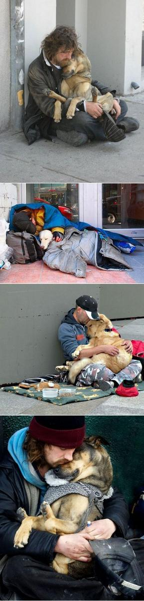 Dogs love humans regardless of their status: http://t.co/PtQfNql9Xh