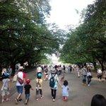 RT @livedoornews: 【ご注意】上野公園でデング熱感染か…動物園含め閉鎖せず http://t.co/BTQQWGXiDZ 東京都は19日、デング熱を発症した埼玉県の20歳代の女性が上野公園で蚊に刺され、感染したとみられると発表した。 http://t.co/KA2fjFK7F3
