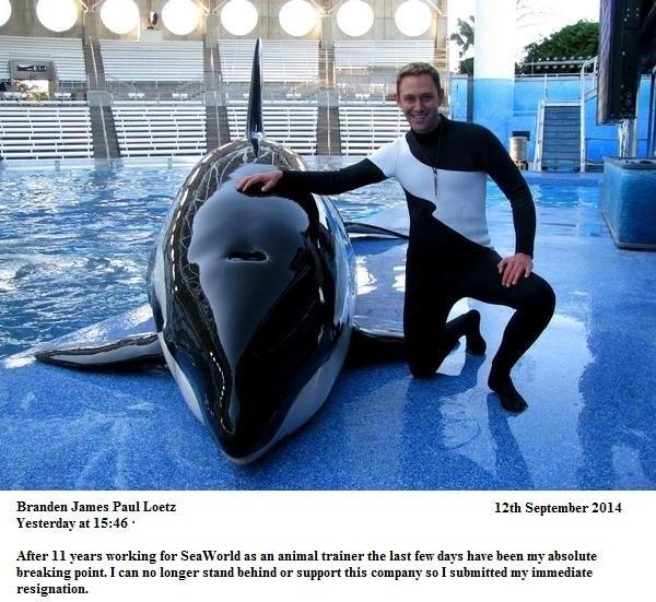 ...and another veteran @SeaWorld trainer resigns #Blackfish http://t.co/SG40IPeHjY