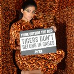 RT @PetaIndia: South Indian cinema star @priyamani6 is crammed in a box to say NO to zoo prisons: http://t.co/lKWxMuIm9a. http://t.co/V9FEl…