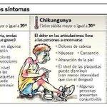 SÍNTOMAS DE CHIKUNGUNYA, DENGUE Y RESFRÍADO http://t.co/vmooXWVg7E