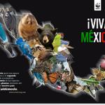#AlGritoDe ¡cuida la riqueza natural de tu país! Viva México, sus bosques, desiertos, cenotes, mares, sus etnias.. http://t.co/vc1KrmuzJv