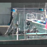 RT @miladysa: Curtain lowered over the butcher house door as they attempt 2 hide their wicked deeds. WE SEE YOU TAIJI! #tweet4taiji http://t.co/RgoziPSvtp