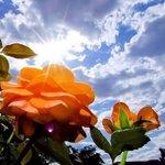 @ViviXagara καλή μέρα Βιβή μου και σε ευχαριστώ για τα καλά σου λόγια ???? ???? ???? να έχεις κι εσύ μια πανεμορφη ημέρα!! http://t.co/dFucKQW2I5