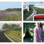 24 sept excursie Willem Alexander Park 1km lange tunneldakpark bovenop A2 http://t.co/IIo4Emk0Re http://t.co/rlR7eT4ATU